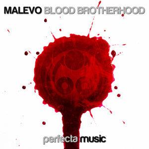 Malevo 歌手頭像