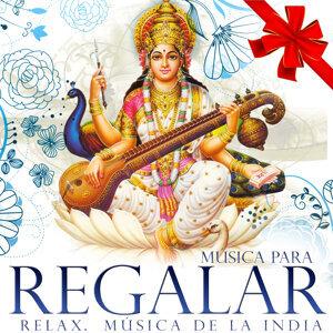 Relajación Hindú Delhi Band