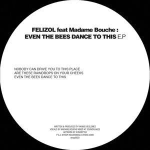 Felizol