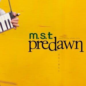 m.s.t 歌手頭像
