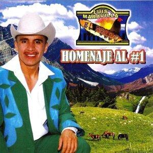 Luis Maravilla 歌手頭像