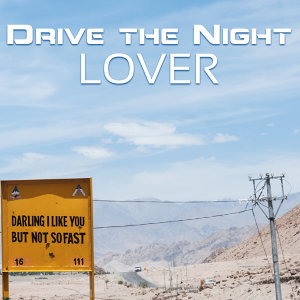 Drive the Night 歌手頭像