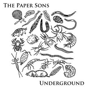 The Paper Sons 歌手頭像