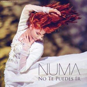 Numa 歌手頭像