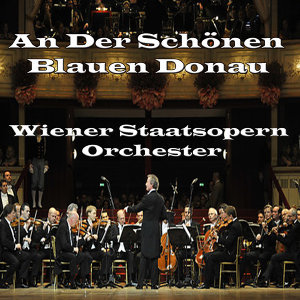 Wiener Staatsopern Orchester 歌手頭像