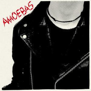 Amoebas 歌手頭像