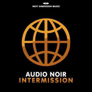 Audio Noir 歌手頭像