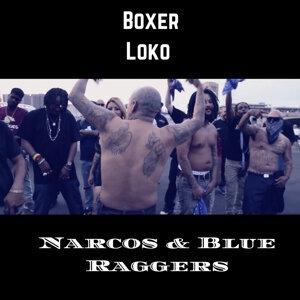Boxer Loco 歌手頭像