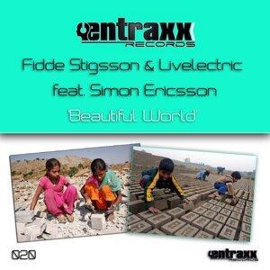 Fidde Stigsson & Livelectric 歌手頭像