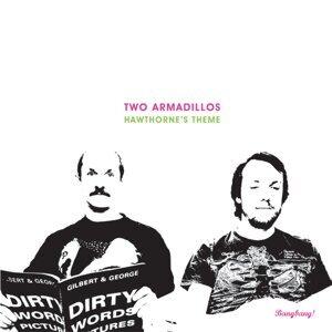 Two Armadillos