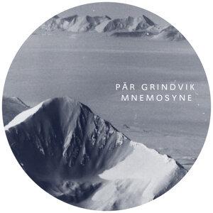 Pär Grindvik 歌手頭像