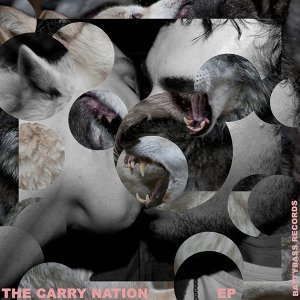 The Carry Nation 歌手頭像