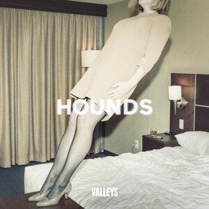 Valleys 歌手頭像