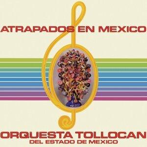 Orquesta Tollocan del Estado de México 歌手頭像
