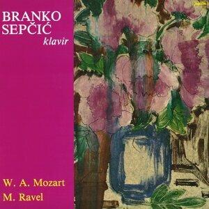 Branko Sepcic 歌手頭像