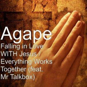 Agape 歌手頭像