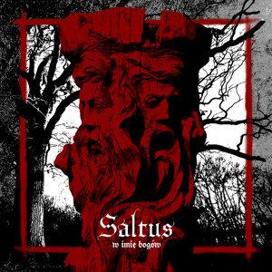 Saltus 歌手頭像