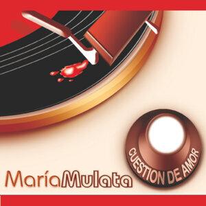 María Mulata 歌手頭像