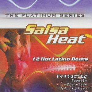 Salsa Heat 歌手頭像