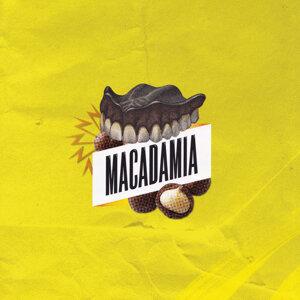 Macadamia 歌手頭像