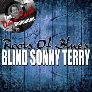 Blind Sonny Terry 歌手頭像