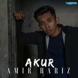 Amir Hariz