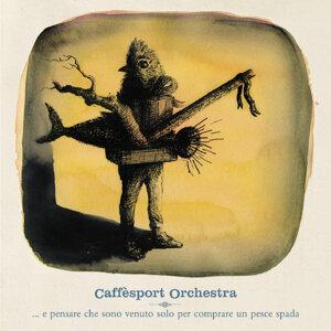 Caffèsport Orchestra 歌手頭像