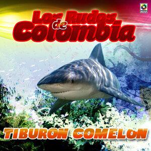 Los Rudos De Colombia 歌手頭像