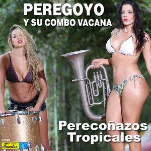 Peregoyo y Su Combo Vacaná 歌手頭像