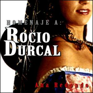 Ana Redondo 歌手頭像