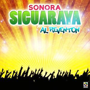 Sonora Siguaraya 歌手頭像