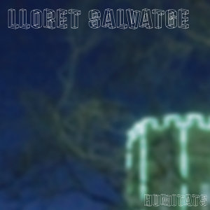 Lloret Salvatge 歌手頭像