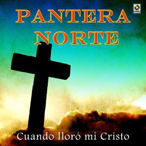 Pantera Norte 歌手頭像