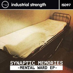 Synaptic Memories 歌手頭像