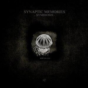 Synaptic Memories