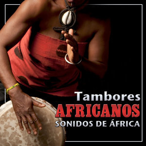 Djembe and Drums African Tribal Band