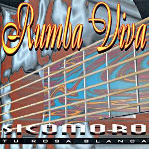 Rumba Viva 歌手頭像