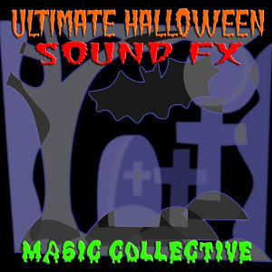 Magic Collective 歌手頭像