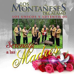Los Montañeses Del Alamo 歌手頭像