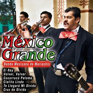Banda Mexicana de Mariachis 歌手頭像