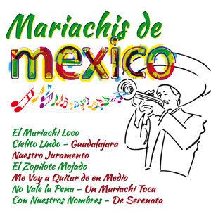 Banda de Mariachis 歌手頭像