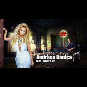 Andreea Banica 歌手頭像