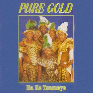 Pure Gold 歌手頭像