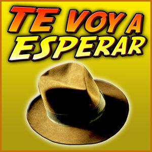 Orquesta Banda Sonora 歌手頭像