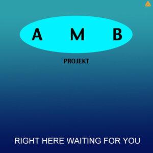 AMB Projekt 歌手頭像