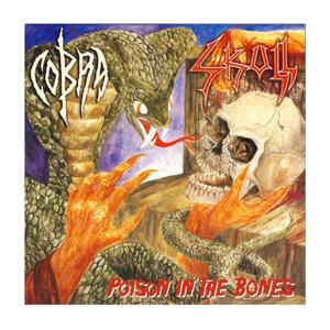 Cobra, Skull 歌手頭像