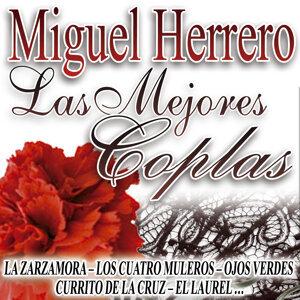 Miguel Herrero 歌手頭像