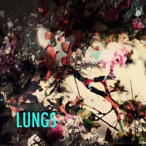 Lungs 歌手頭像