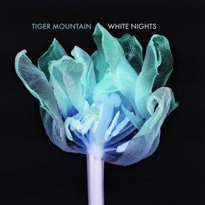Tiger Mountain Artist photo