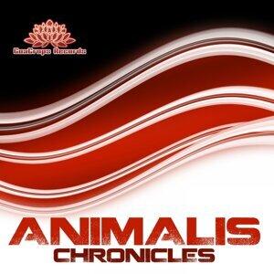 Animalis 歌手頭像